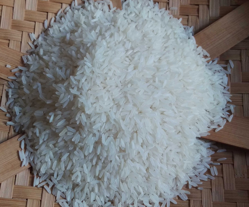 Rice has been cultivated in southern Asia for over ten thousand years